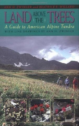 Land Above the Trees: book cover