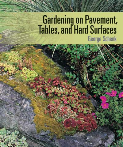 Gardening on Pavement, Tables, and Hard Surfaces book cover