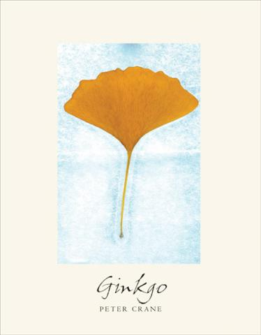 Ginkgo: The Tree That Time Forgot: cover