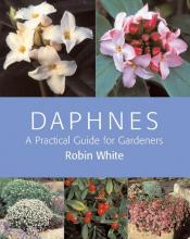 Daphnes: A Practical Guide for Gardeners book cover