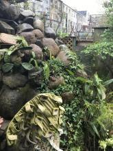 Ragnar Naess garden