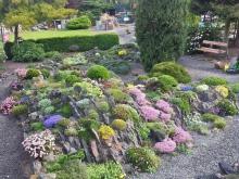 Jiri Papousek Garden