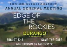 Durango AGM 2021
