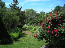 NE view of Simpson Garden