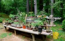 French Garden Bench